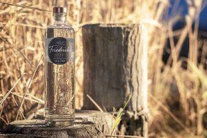 Friedrichs Dry Gin Tasting